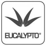 eucalypto