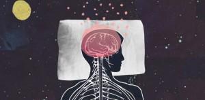 sonno-dormire-cervello